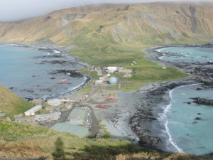 Macquarie Island station as viewed from  North Head