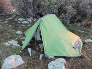 Tent safely tucked behind a boxthorn